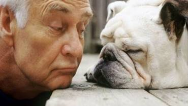 Pet Therapy – a great relationship