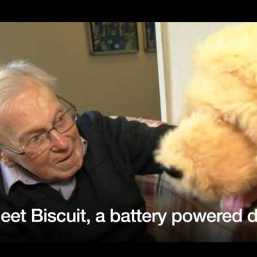 Robotic dog in Dorset care home helps elderly residents